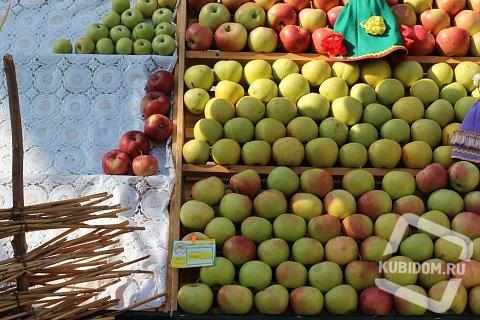 Кубанская сельхозпродукция обзаведется собственным знаком качества